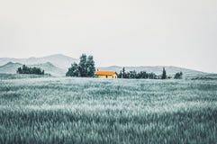 Mooi landbouwershuis tussen bomen royalty-vrije stock fotografie