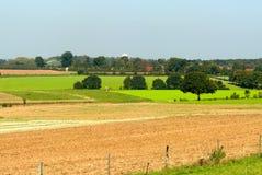 Mooi landbouwgrondlandschap stock foto's