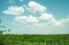 Mooi landelijk landschap Royalty-vrije Stock Afbeelding