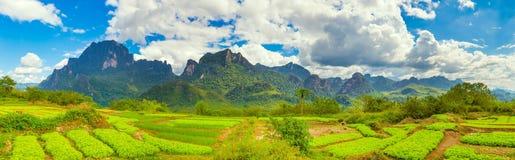 Mooi landelijk landschap Vang Vieng, Laos Panorama stock afbeeldingen