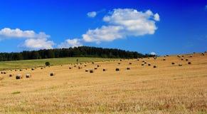 Mooi landschap Stock Afbeeldingen