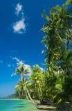 Mooi landschap Stock Foto