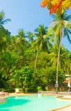 Mooi landschap Stock Foto's