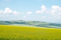 Mooi landschap Royalty-vrije Stock Afbeeldingen