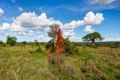 Mooi landschap in Afrika Royalty-vrije Stock Afbeelding