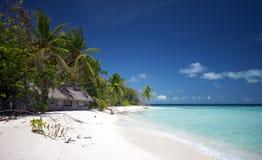 Mooi landschap bij het strand Royalty-vrije Stock Foto