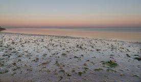 Mooi landschap bij schemer Stock Foto