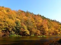 Mooi landschap in de herfst stock foto's
