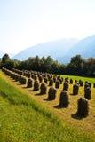 Mooi landschap in de tirolean Alpen stock foto's