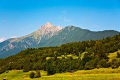 Mooi landschap in de tirolean Alpen, goed ruikend gras stock afbeelding