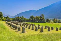 Mooi landschap in de tirolean Alpen met hooioppers royalty-vrije stock afbeelding