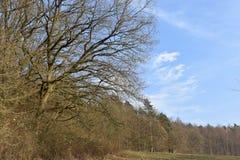 Mooi landschap in de winter op een zonnige dag in Melsungen dichtbij Kassel, Duitsland stock afbeelding