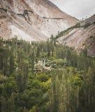 Mooi landschap die een moskee in het centrum van een bos tonen stock foto's