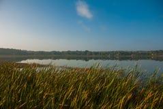 Mooi landschap die het meer Coba, Mexico, Yucatan overzien stock fotografie