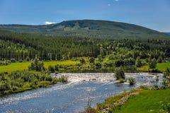 Mooi landschap en landschap van Noorwegen, groen landschap van heuvels en berg Stock Fotografie