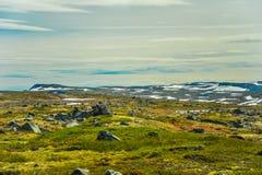 Mooi landschap en landschap van Noorwegen, groen landschap van heuvels en berg Stock Afbeeldingen