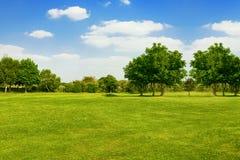 Mooi Landschap, Groot als achtergrond stock afbeelding