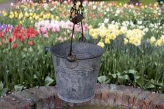 Mooi landschap in het bloempark stock foto