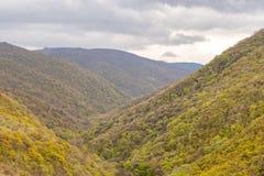 Mooi landschap, machtig hooggebergte in groene bomen en grijze hemel in donkere wolken stock foto