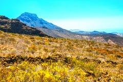 Mooi landschap met bergen Teide Royalty-vrije Stock Foto
