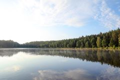 Mooi landschap met bos dichtbij meer Royalty-vrije Stock Afbeelding