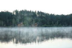 Mooi landschap met bos en huizen dichtbij meer Royalty-vrije Stock Fotografie