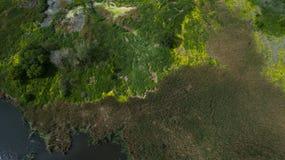 Mooi landschap met een hommel Stock Afbeelding