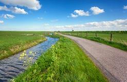Mooi landschap met groen grasgebied, weg, vuurtoren Royalty-vrije Stock Foto