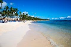 Mooi landschap met grote groene palmen in de voorgrond aan de achtergrond van toeristenparaplu's en sunbeds op a Stock Fotografie