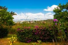 Mooi landschap met heldere kleuren en bergmeningen cuba Stock Fotografie