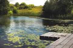Mooi landschap met kalm watermeer met houten pijler en gele waterlilies, riet, bomen en bos stock afbeeldingen