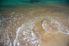 Mooi landschap met mening van oceaan, perfect strand, grote stenen, bomen, azuurblauw water Achtergrondtextuurbeeld Concept stock afbeelding