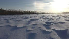 Mooi landschap met sneeuwhulpoppervlakte en sterke wind stock footage