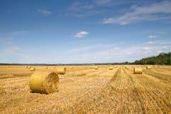 Mooi landschap met strobalen Royalty-vrije Stock Foto