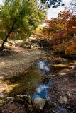 Mooi landschap met stroom in de herfstseizoen Stock Foto