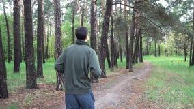 Mooi landschap met witte berken Het bosje van de berk Mooi panorama stock video