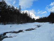 Mooi landschap op Bergrivier in de Alpen op een ijzige de winter zonnige dag royalty-vrije stock afbeelding