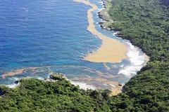 Mooi landschap: overzees, kust, Dominicaans nationaal park, zeewier royalty-vrije stock foto