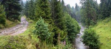 Mooi landschap, panorama, banner, met een mening van bos en rivier in de Karpatische Bergen Royalty-vrije Stock Fotografie