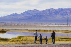 Mooi landschap rond Tecopa Stock Afbeeldingen