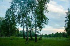 Mooi landschap, Russische aard Stock Foto