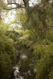 Mooi landschap in Suzhou China stock fotografie