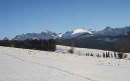 Mooi landschap in Tatra-bergen Stock Afbeelding