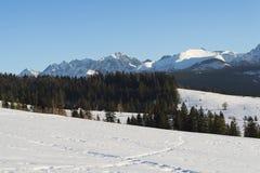 Mooi landschap in Tatra-bergen Royalty-vrije Stock Fotografie