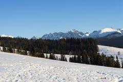 Mooi landschap in Tatra-bergen Royalty-vrije Stock Afbeeldingen