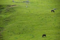 Mooi Landschap in Tucuman Argentinië Royalty-vrije Stock Foto