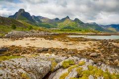 Mooi landschap van aard in Lofoten-eilanden, Noorwegen Stock Foto's