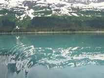 Mooi landschap van Alaska Stock Afbeeldingen