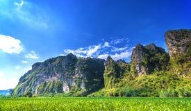 Mooi landschap van berg Stock Foto