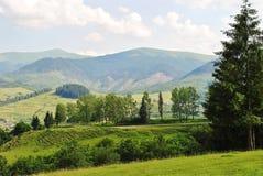 Mooi landschap van bergen en bossen Stock Foto's